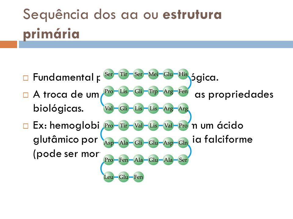 Sequência dos aa ou estrutura primária