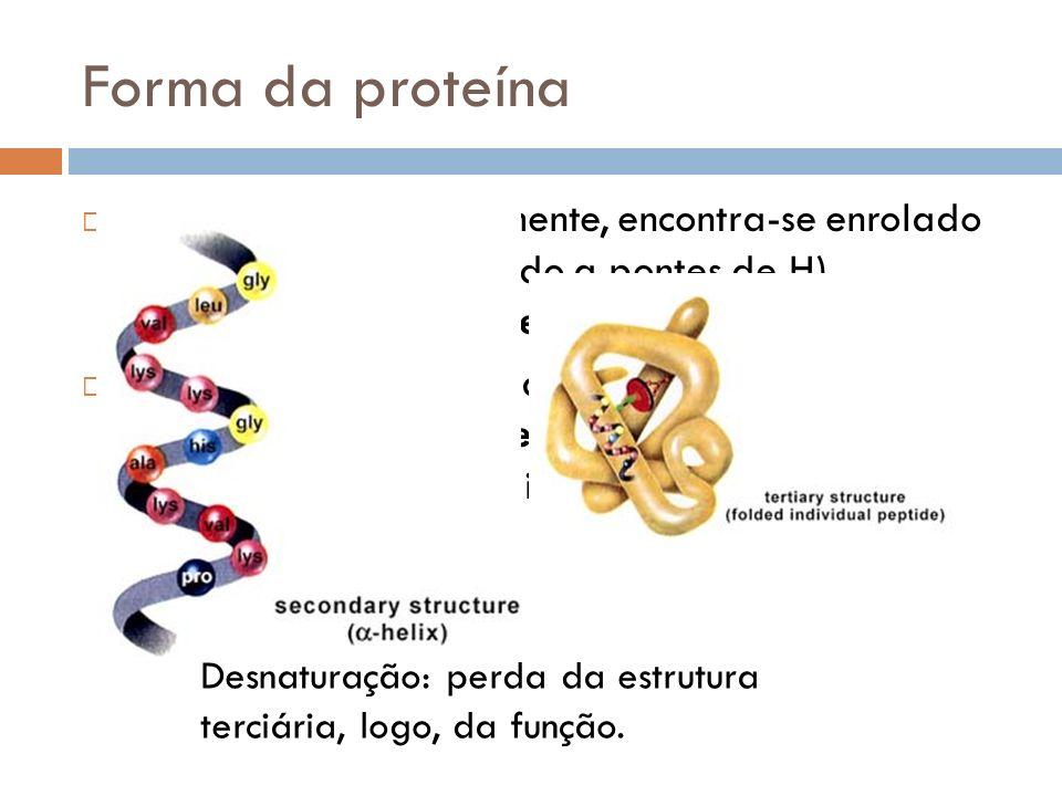 Forma da proteína