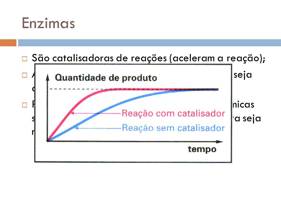Enzimas São catalisadoras de reações (aceleram a reação);