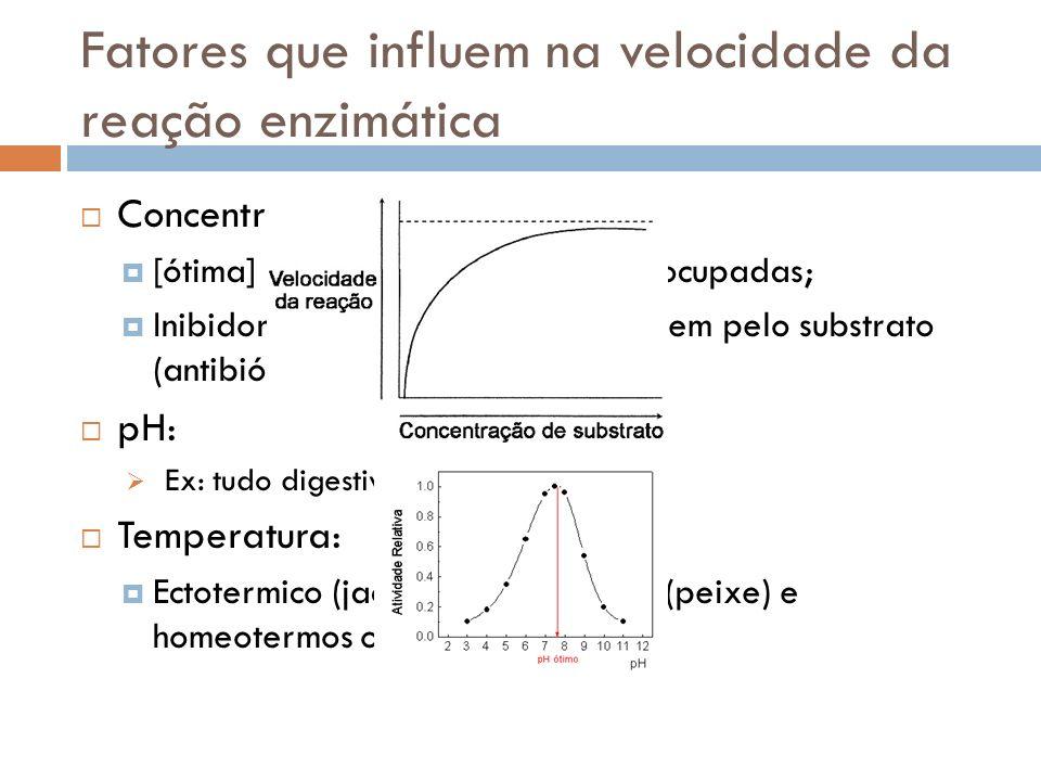 Fatores que influem na velocidade da reação enzimática