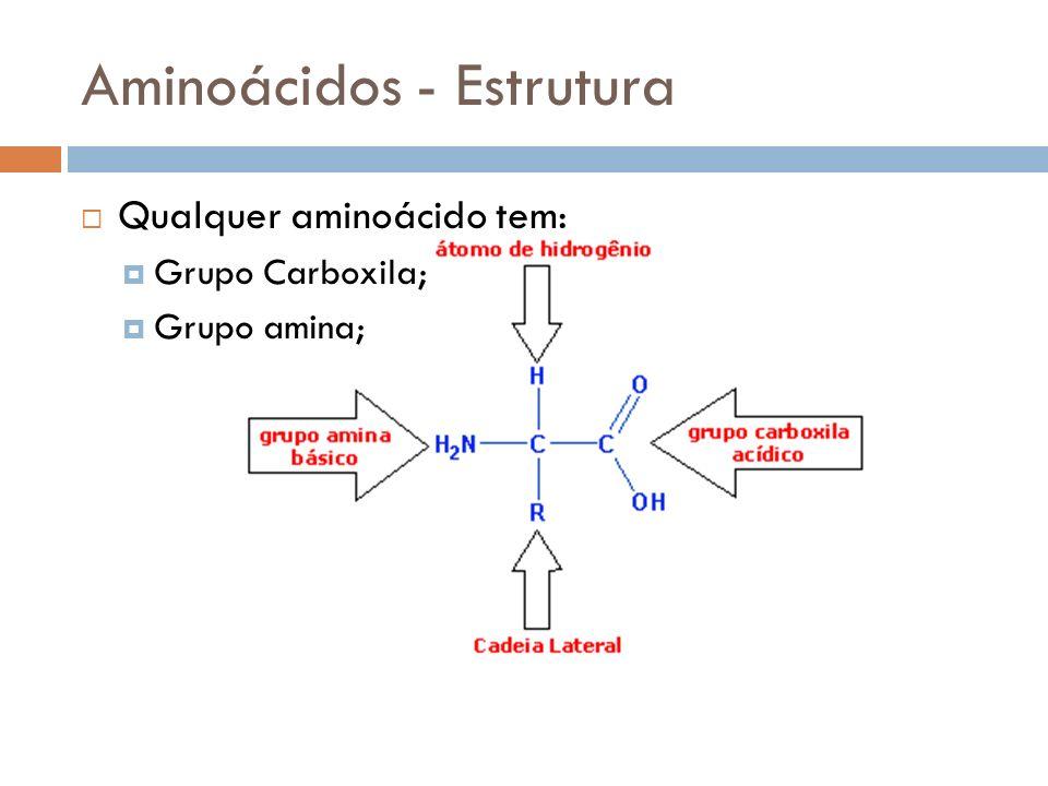 Aminoácidos - Estrutura