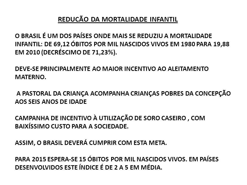 REDUCÃO DA MORTALIDADE INFANTIL O BRASIL É UM DOS PAÍSES ONDE MAIS SE REDUZIU A MORTALIDADE INFANTIL: DE 69,12 ÓBITOS POR MIL NASCIDOS VIVOS EM 1980 PARA 19,88 EM 2010 (DECRÉSCIMO DE 71,23%).