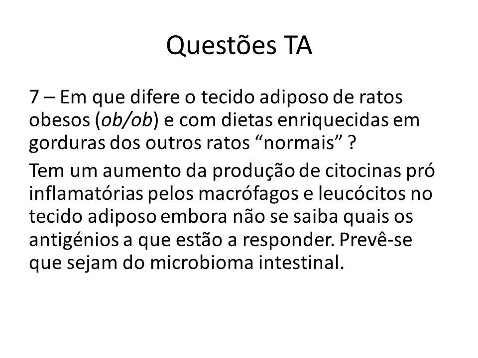 Questões TA 7 – Em que difere o tecido adiposo de ratos obesos (ob/ob) e com dietas enriquecidas em gorduras dos outros ratos normais