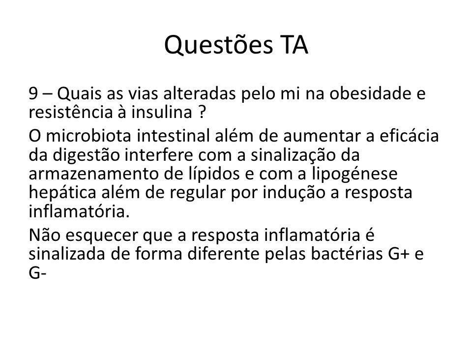 Questões TA 9 – Quais as vias alteradas pelo mi na obesidade e resistência à insulina