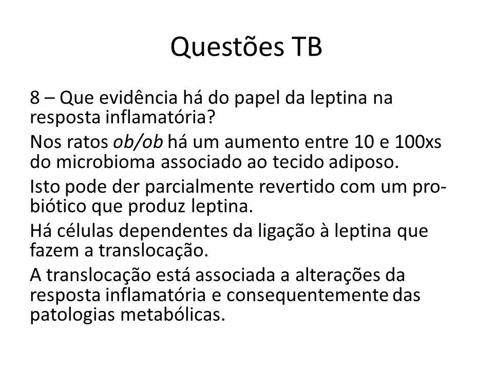 Questões TB