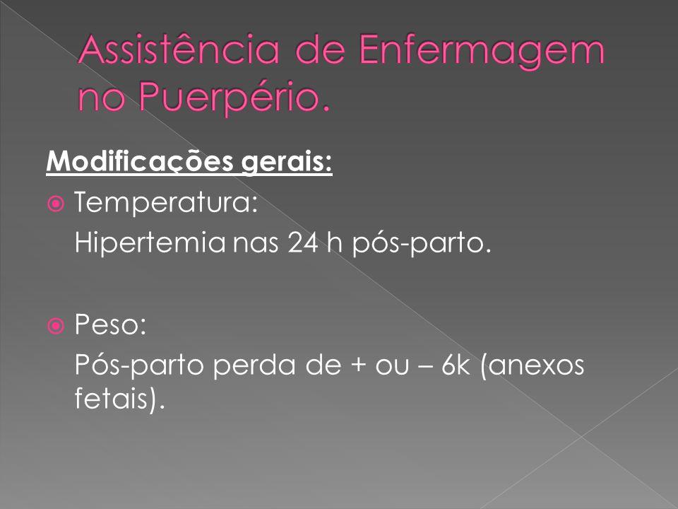 Assistência de Enfermagem no Puerpério.