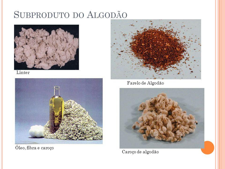 Subproduto do Algodão Línter Farelo de Algodão Óleo, fibra e caroço