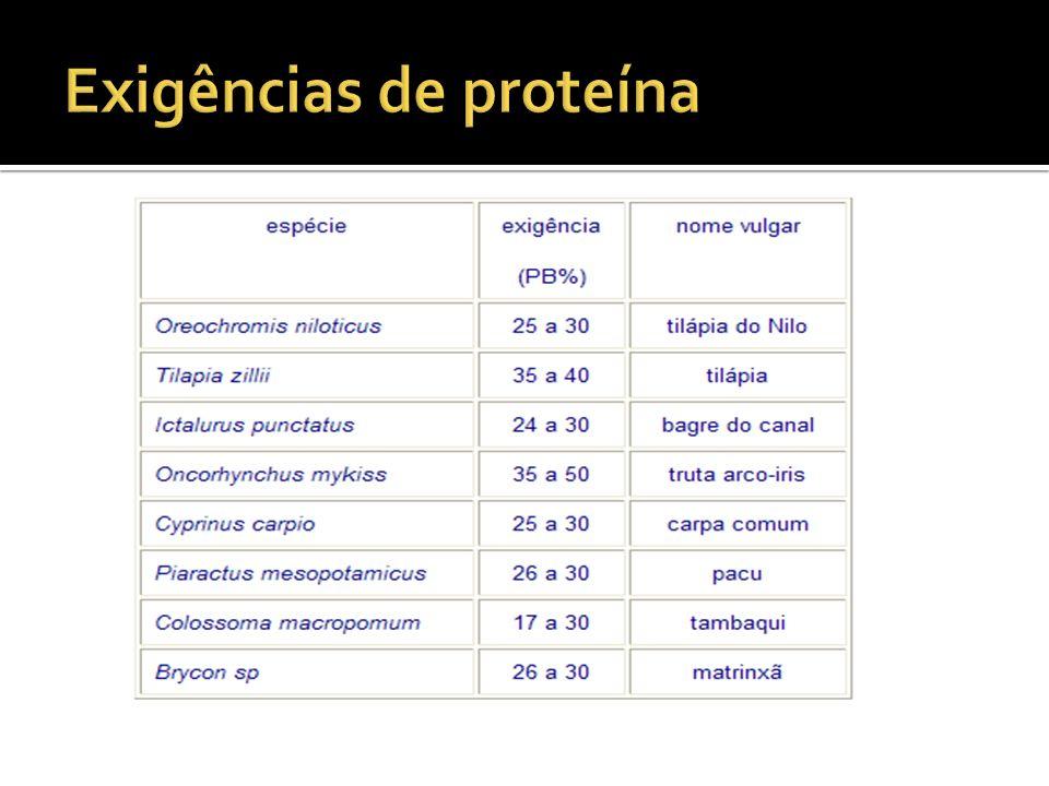 Exigências de proteína