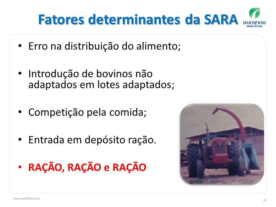 Fatores determinantes da SARA