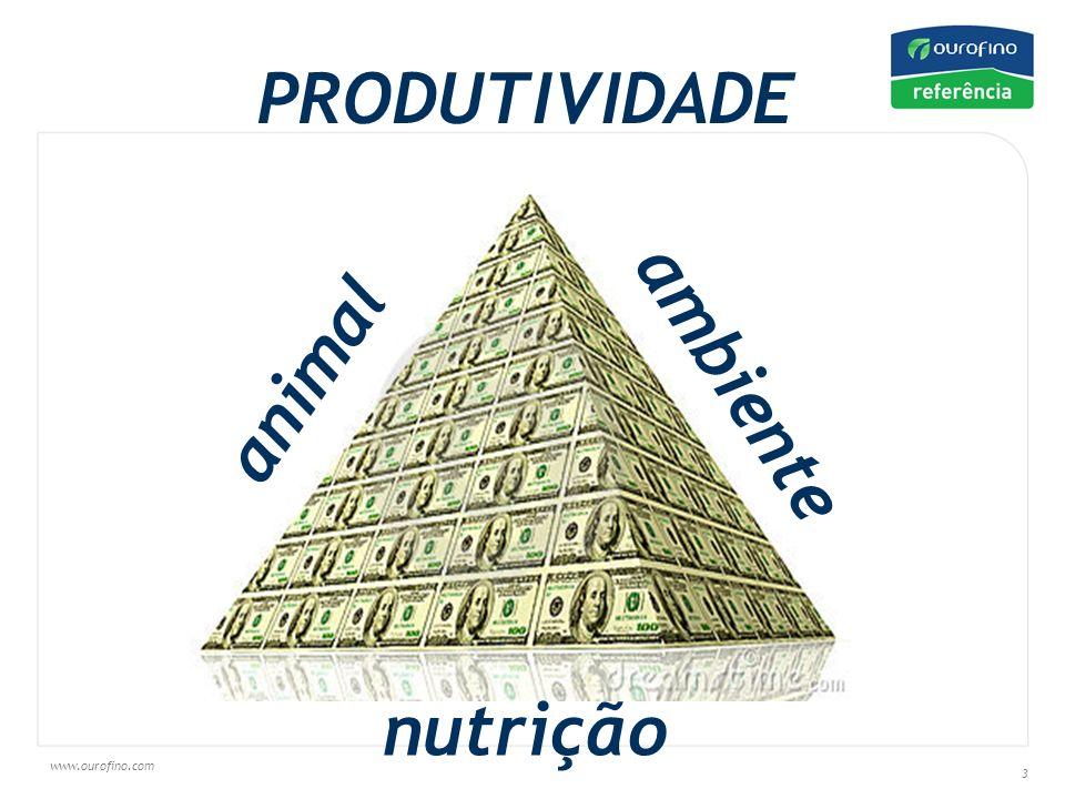 PRODUTIVIDADE animal ambiente nutrição