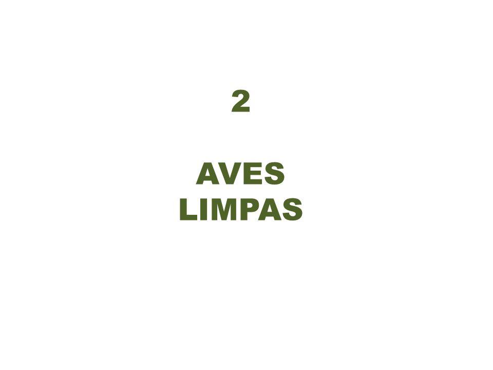2 AVES LIMPAS