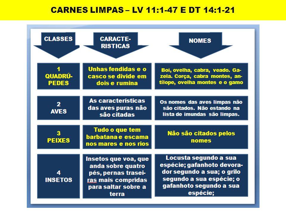 CARNES LIMPAS – LV 11:1-47 E DT 14:1-21
