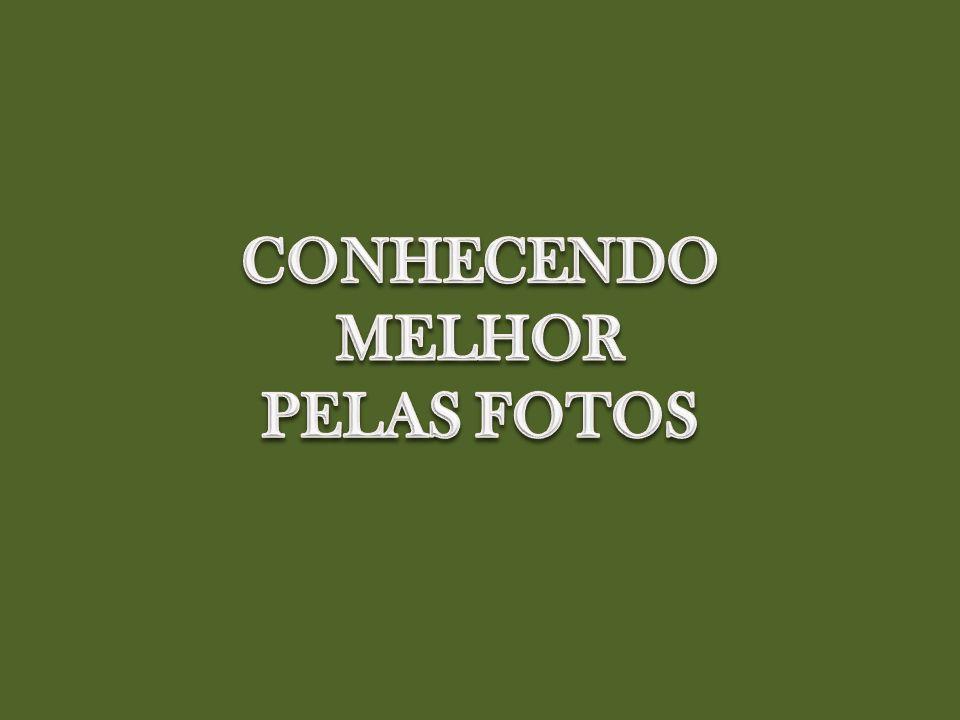 CONHECENDO MELHOR PELAS FOTOS