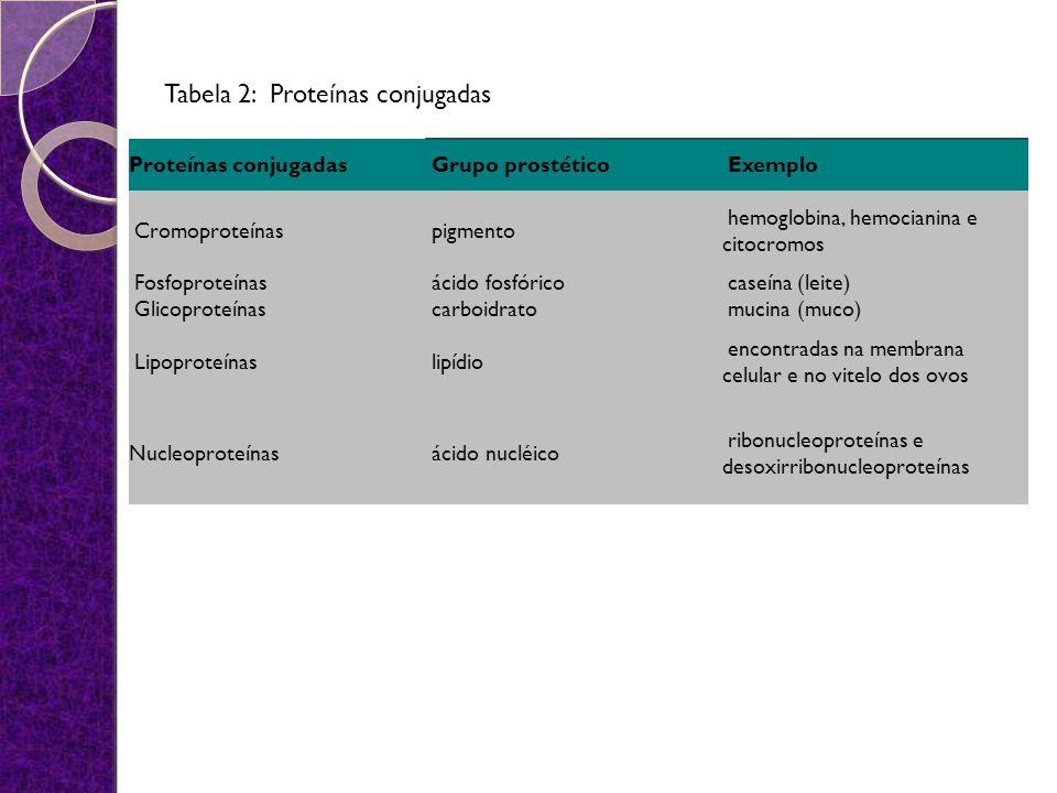 Tabela 2: Proteínas conjugadas