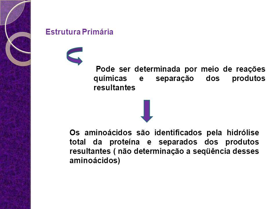 Estrutura Primária Pode ser determinada por meio de reações químicas e separação dos produtos resultantes.