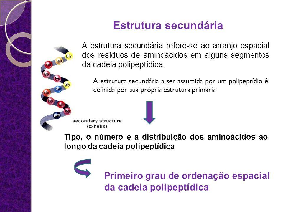 Estrutura secundária A estrutura secundária refere-se ao arranjo espacial dos resíduos de aminoácidos em alguns segmentos da cadeia polipeptídica.