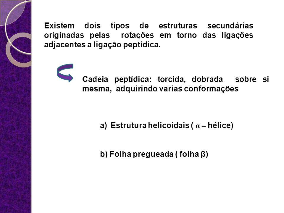 Existem dois tipos de estruturas secundárias originadas pelas rotações em torno das ligações adjacentes a ligação peptídica.