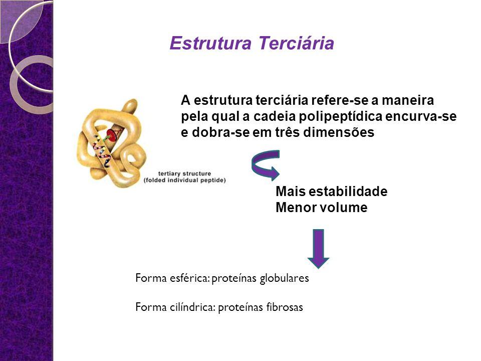 Estrutura Terciária A estrutura terciária refere-se a maneira pela qual a cadeia polipeptídica encurva-se e dobra-se em três dimensões.