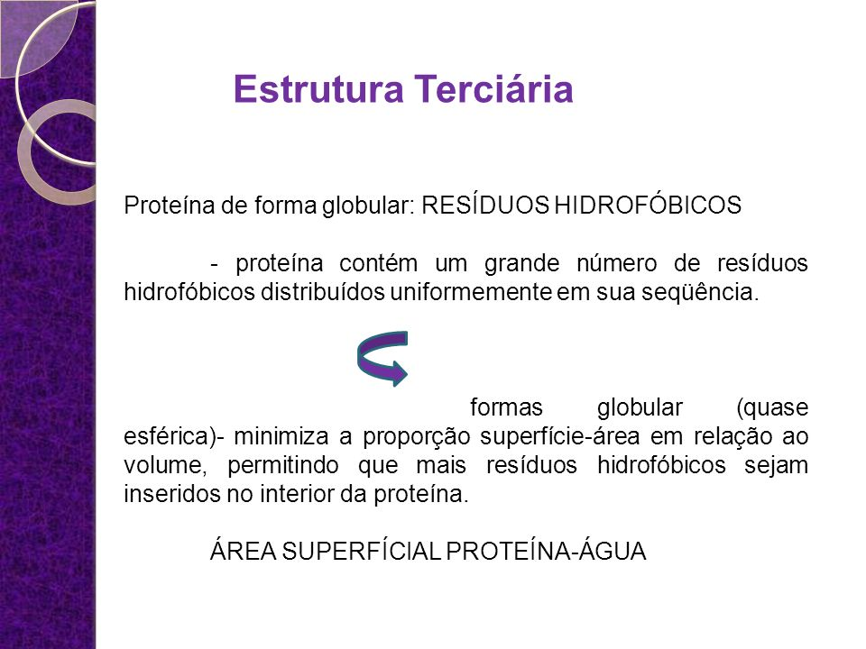 Estrutura Terciária Proteína de forma globular: RESÍDUOS HIDROFÓBICOS