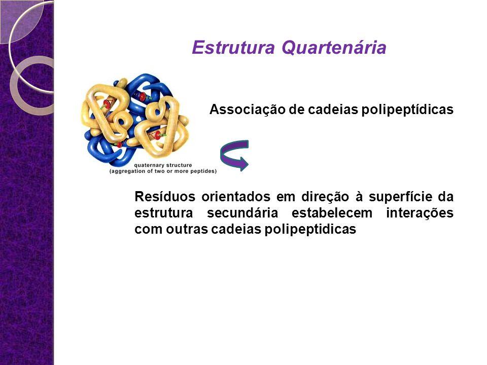 Associação de cadeias polipeptídicas