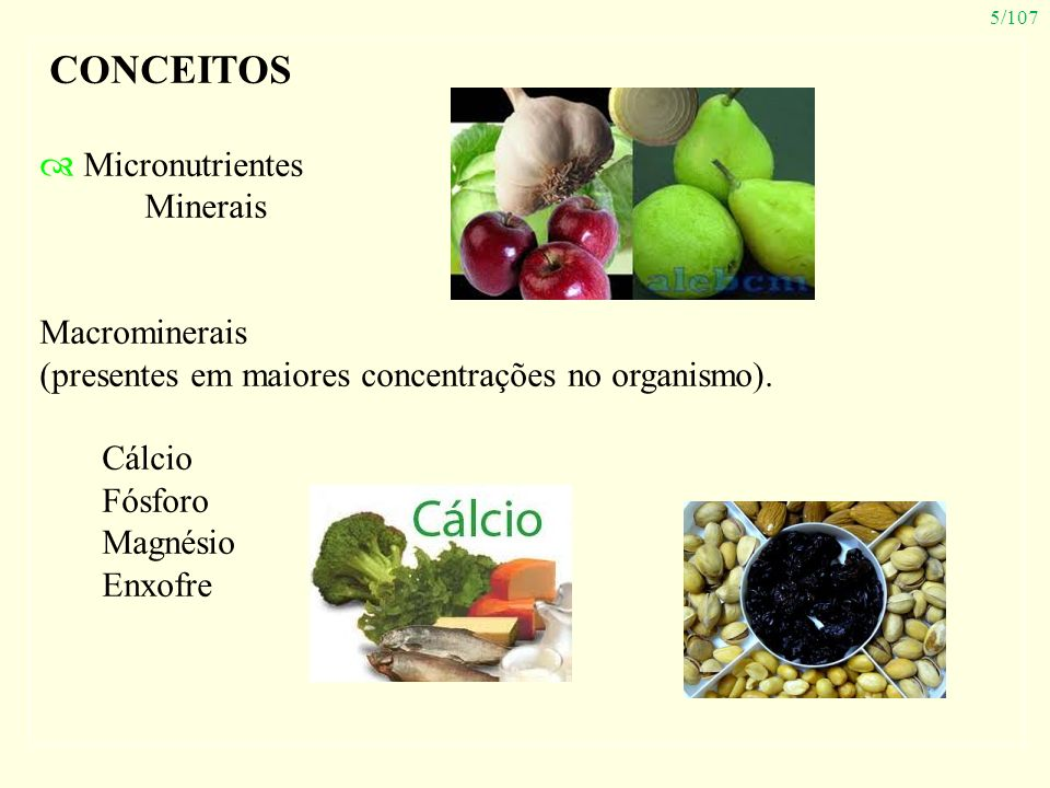 CONCEITOS Micronutrientes Minerais Macrominerais