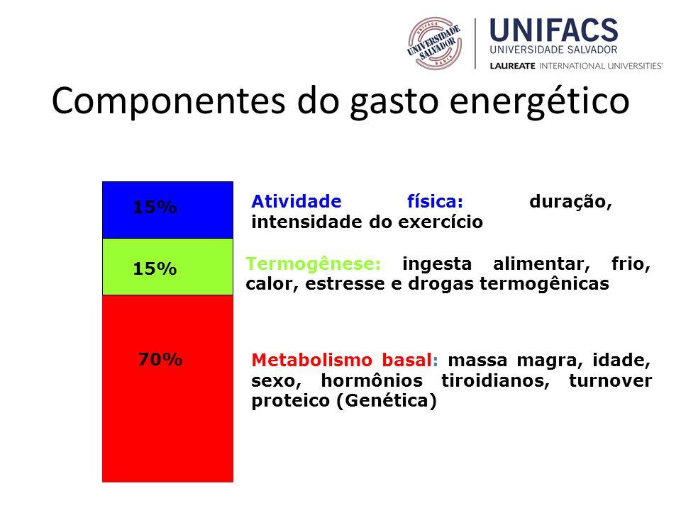Componentes do gasto energético