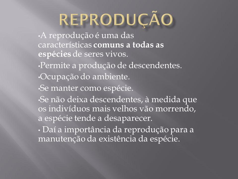 Reprodução A reprodução é uma das características comuns a todas as espécies de seres vivos. Permite a produção de descendentes.
