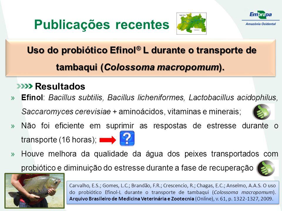 Publicações recentes Uso do probiótico Efinol® L durante o transporte de tambaqui (Colossoma macropomum).