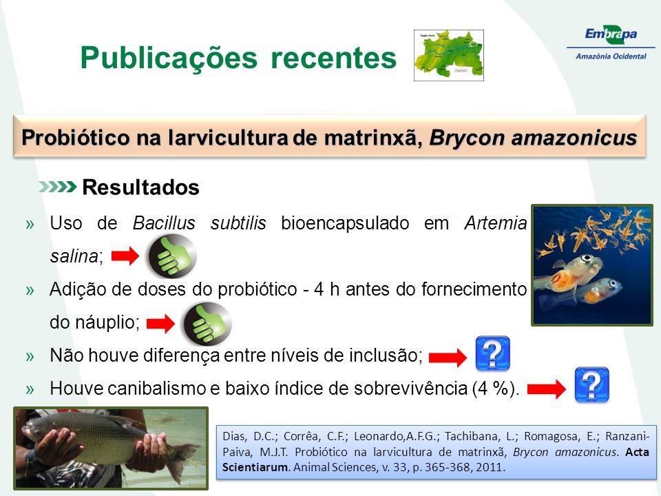 Probiótico na larvicultura de matrinxã, Brycon amazonicus