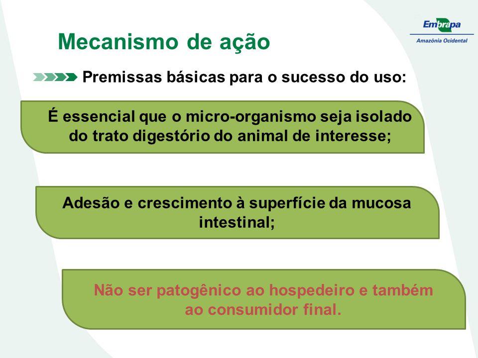 Mecanismo de ação Premissas básicas para o sucesso do uso: