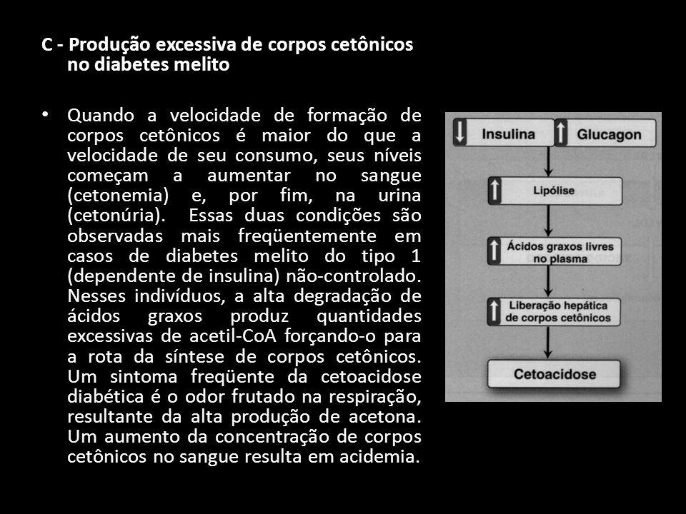 C - Produção excessiva de corpos cetônicos no diabetes melito