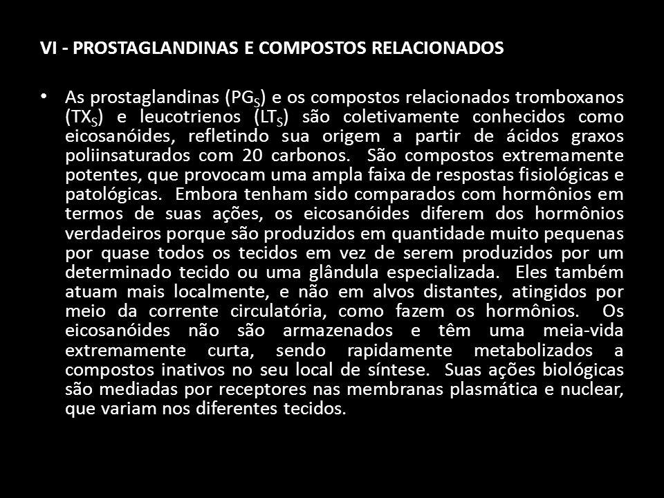 VI - PROSTAGLANDINAS E COMPOSTOS RELACIONADOS
