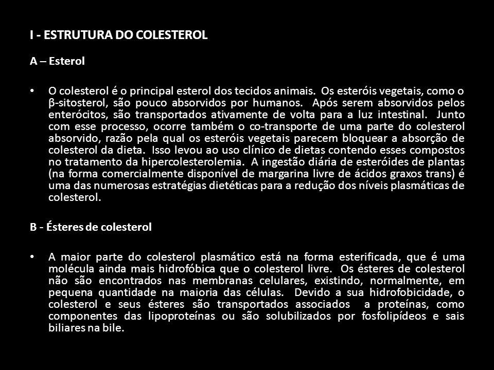 I - ESTRUTURA DO COLESTEROL