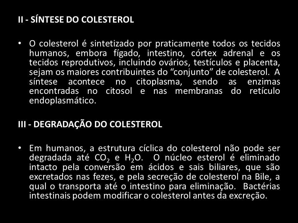 II - SÍNTESE DO COLESTEROL