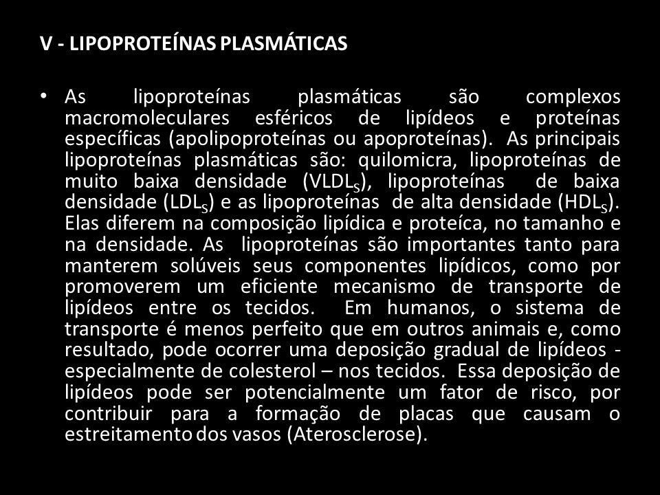 V - LIPOPROTEÍNAS PLASMÁTICAS