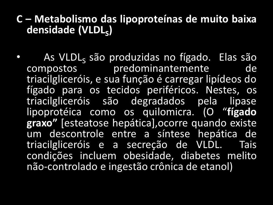 C – Metabolismo das lipoproteínas de muito baixa densidade (VLDLS)