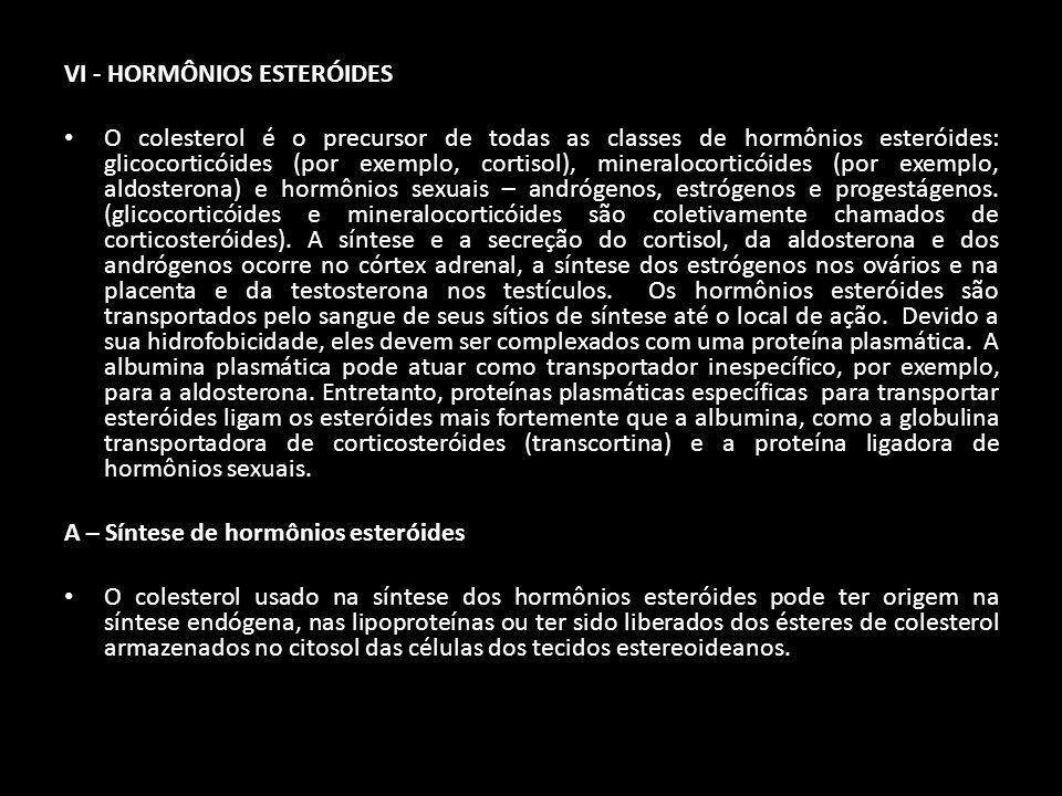 VI - HORMÔNIOS ESTERÓIDES