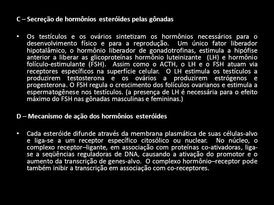 C – Secreção de hormônios esteróides pelas gônadas
