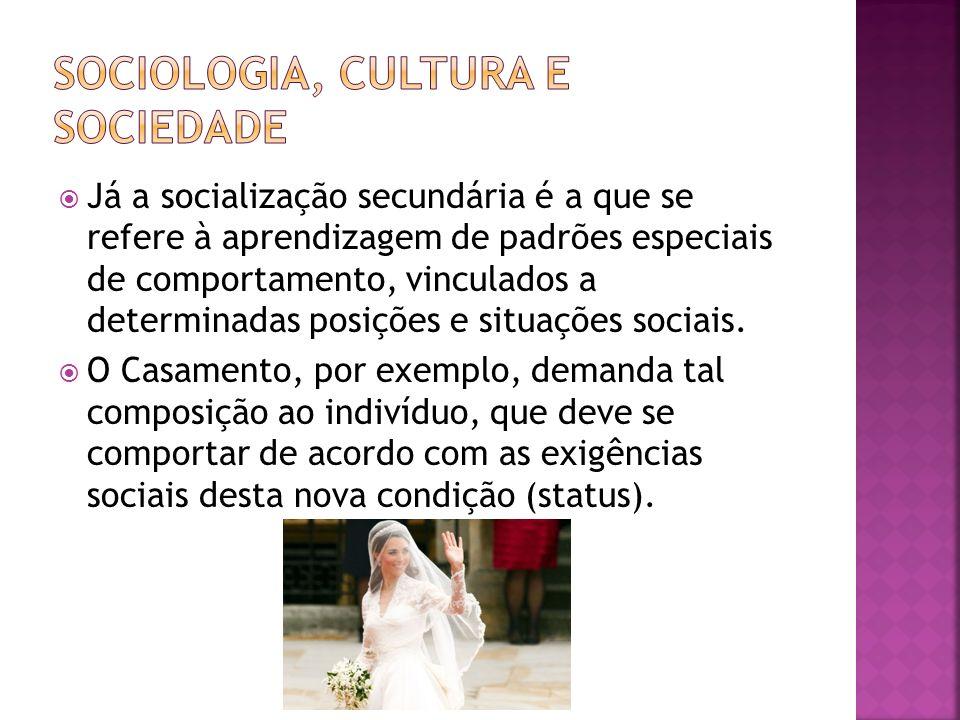 Sociologia, cultura e sociedade