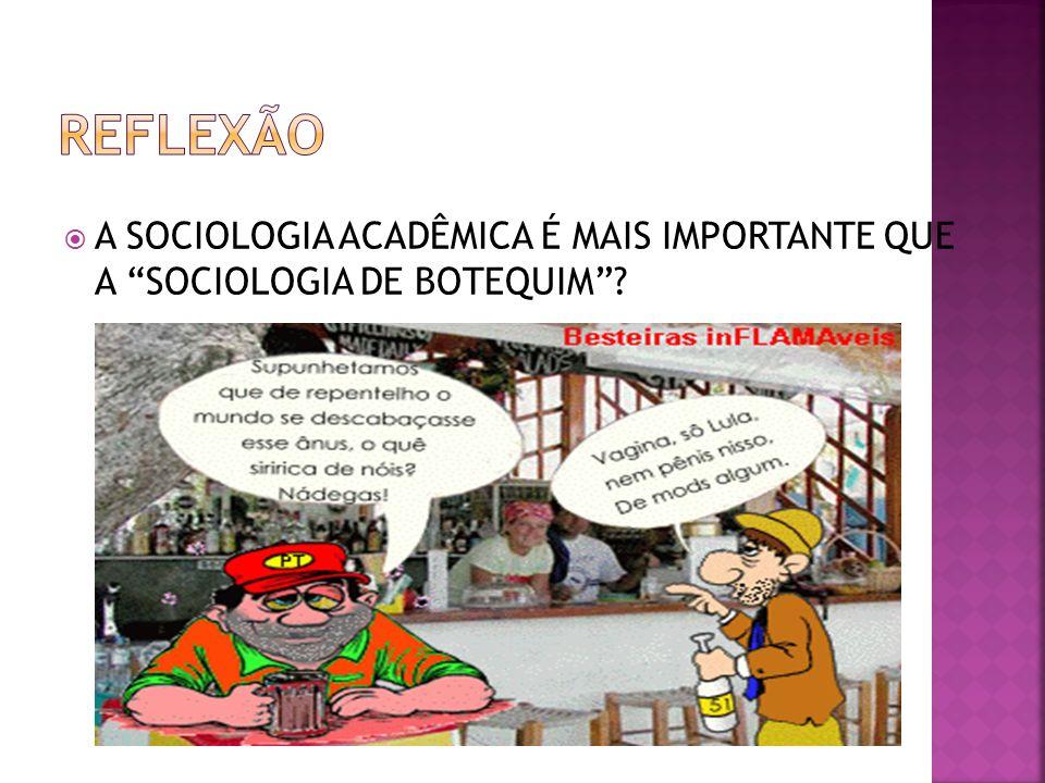 REFLEXÃO A SOCIOLOGIA ACADÊMICA É MAIS IMPORTANTE QUE A SOCIOLOGIA DE BOTEQUIM