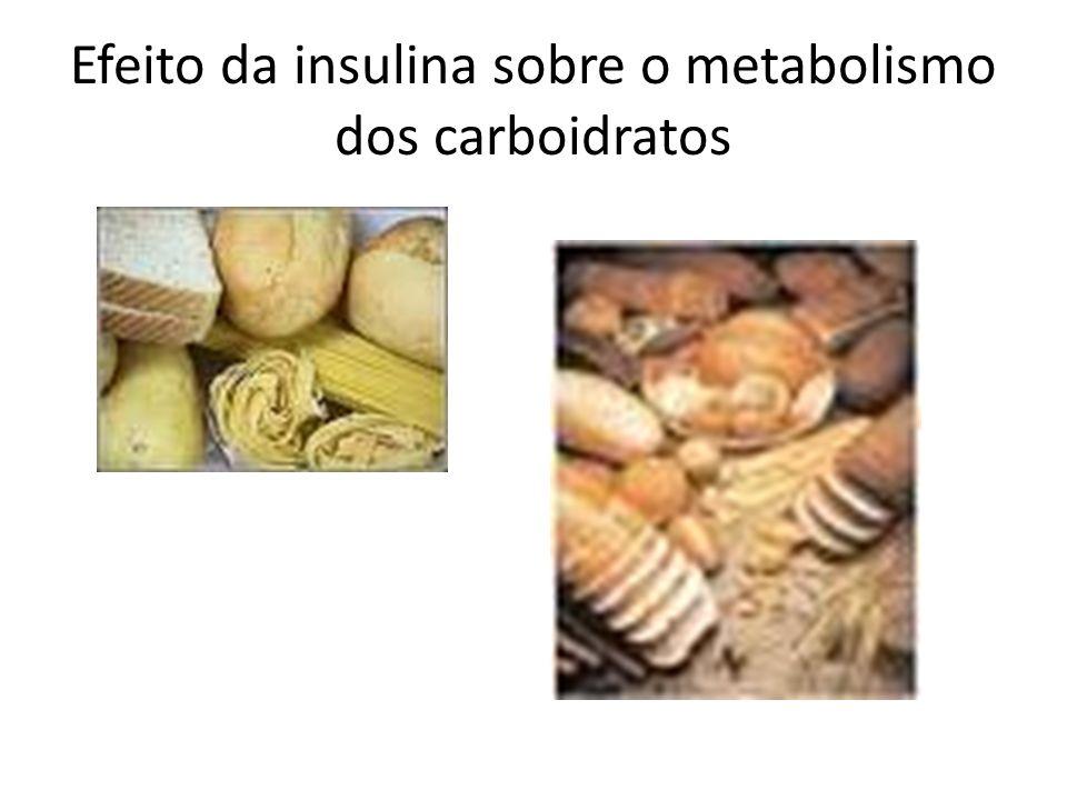 Efeito da insulina sobre o metabolismo dos carboidratos