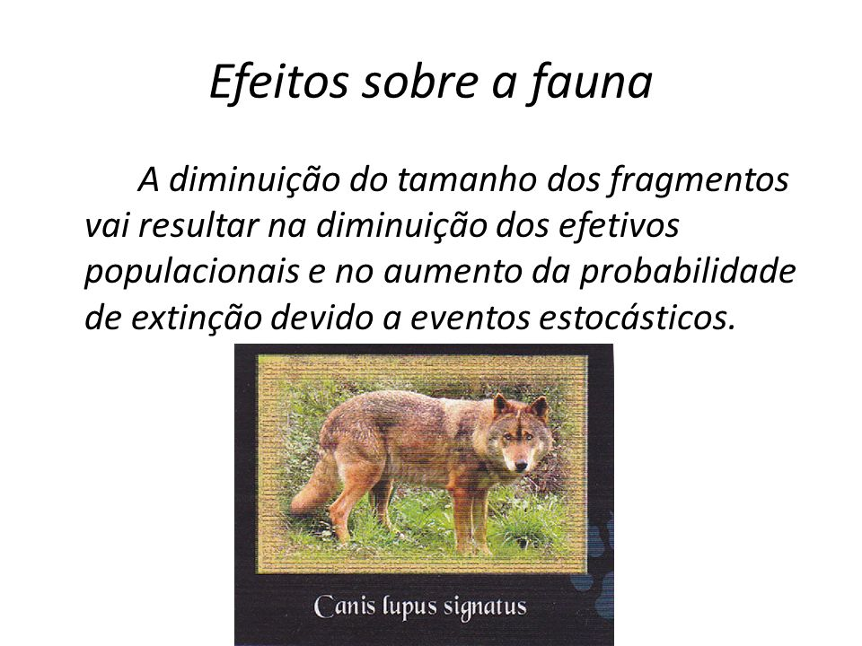 Efeitos sobre a fauna