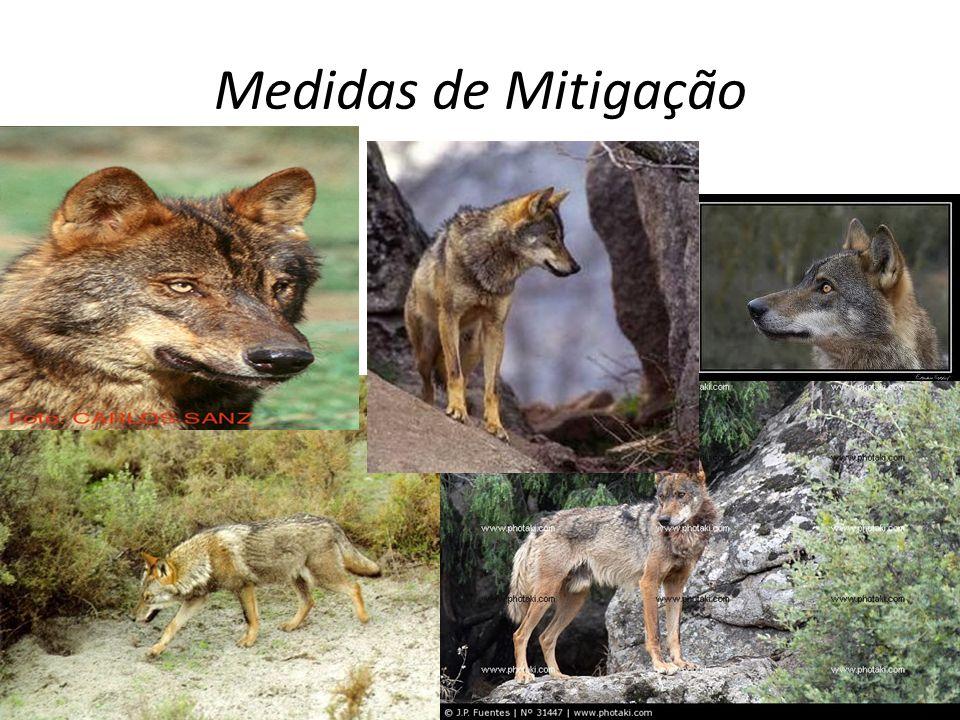Medidas de Mitigação