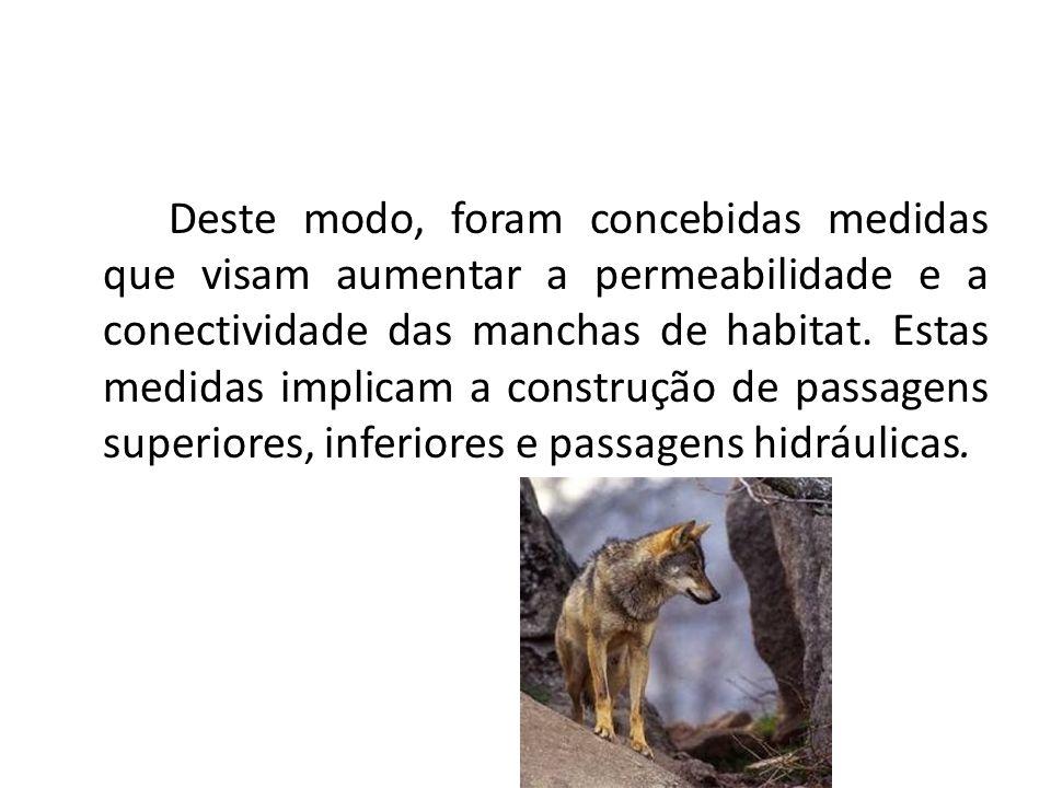 Deste modo, foram concebidas medidas que visam aumentar a permeabilidade e a conectividade das manchas de habitat.