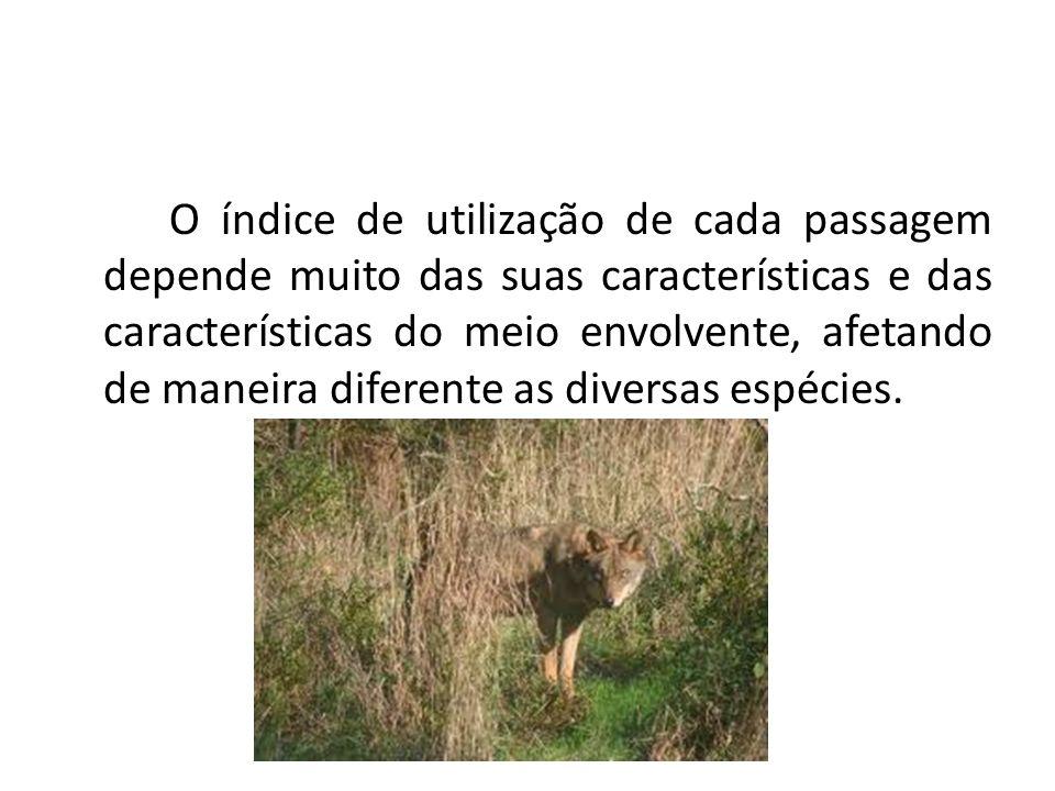 O índice de utilização de cada passagem depende muito das suas características e das características do meio envolvente, afetando de maneira diferente as diversas espécies.
