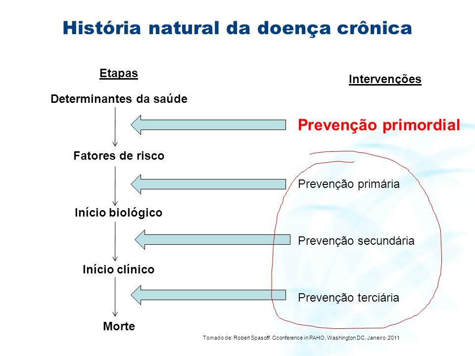 História natural da doença crônica
