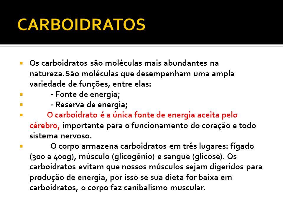 CARBOIDRATOS Os carboidratos são moléculas mais abundantes na natureza.São moléculas que desempenham uma ampla variedade de funções, entre elas: