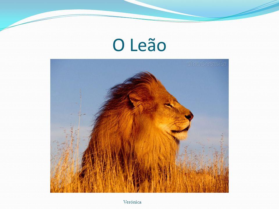 O Leão Verónica