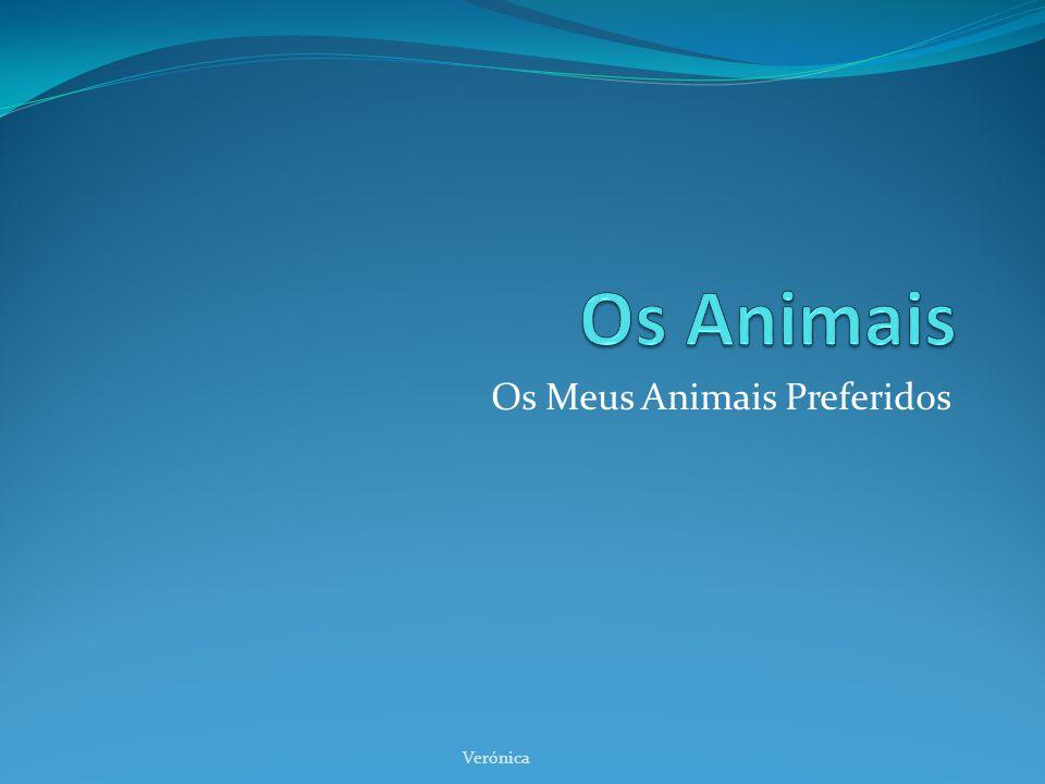 Os Meus Animais Preferidos