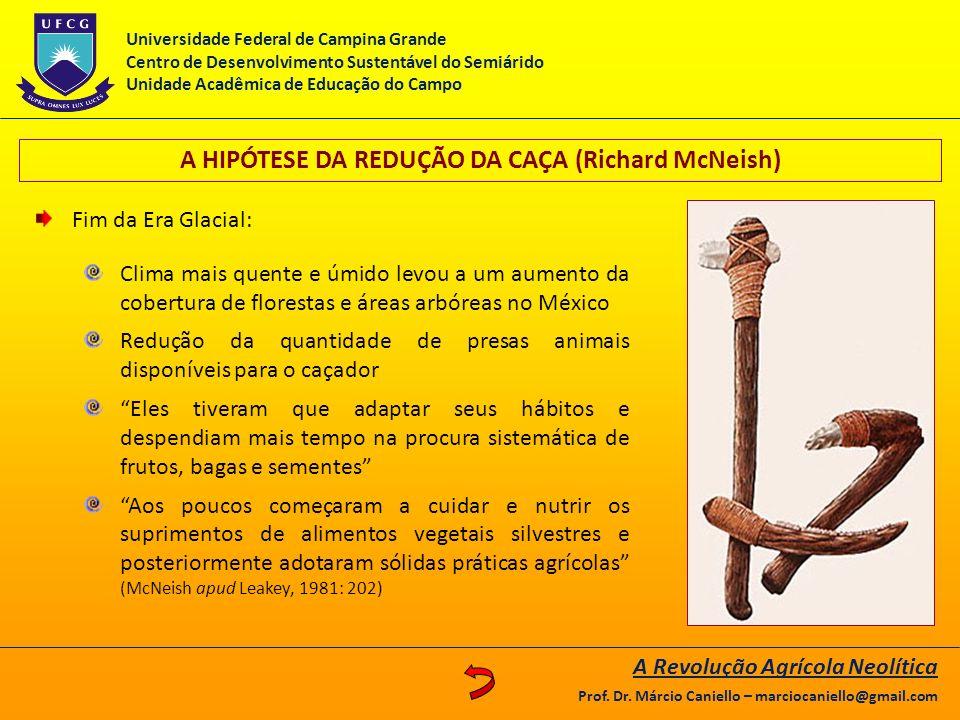A HIPÓTESE DA REDUÇÃO DA CAÇA (Richard McNeish)